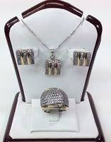 Picture for category Silver and Gold Plated